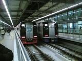 20050302.jpg